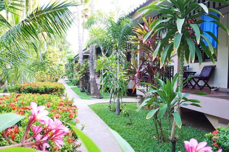 Hotel Lamai Inn
